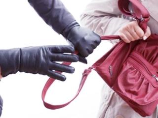 बदमाशों ने पीएम की भतीजी दमयंती बेन का पर्स लूटा