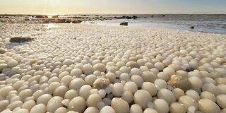 बीच पर दिखे अंडे के आकार के हजारों दुर्लभ बर्फ के गोले