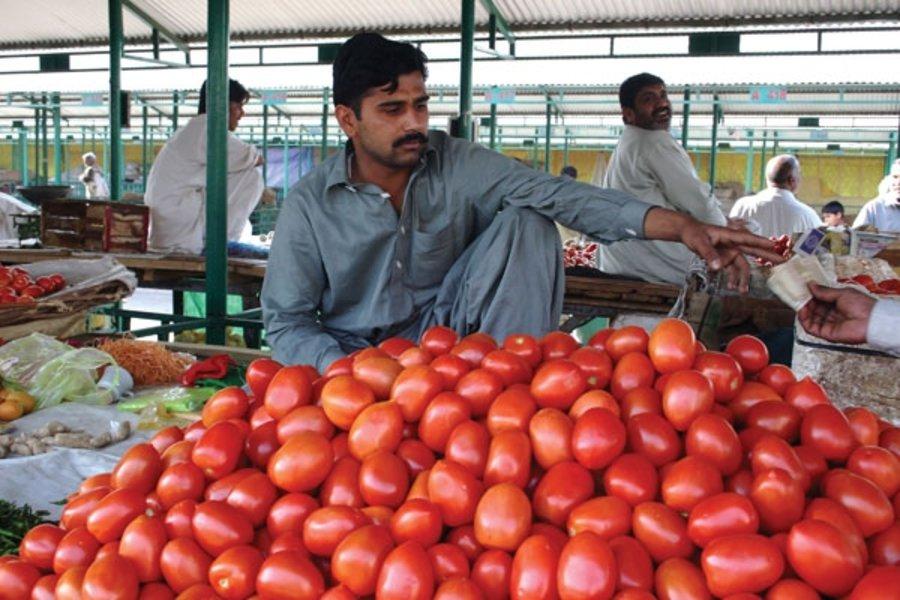 पाकिस्तान में टमाटर की कीमतों ने मचाई हाहाकार, 300 रुपये किलो हुआ दाम