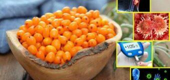 सेहत के लिए बेहद फायदेमंद है बक्थोर्न फल, जानिए खूबियां